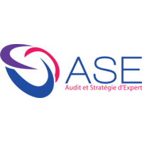 ASE - AUDIT ET STRATEGIE D'EXPERT